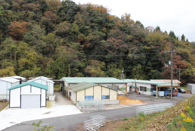 邑智郡森林組合 菌床榾木センター