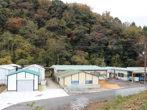 菌床椎茸榾木センター